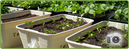 View our GreenSmart Pots Image Gallery